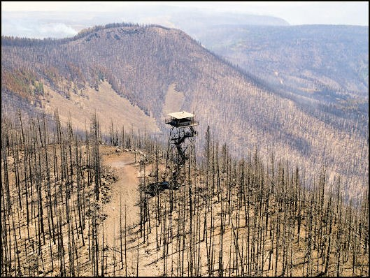 Escondilla Lookout burned in the Wallow Fire, June 2011
